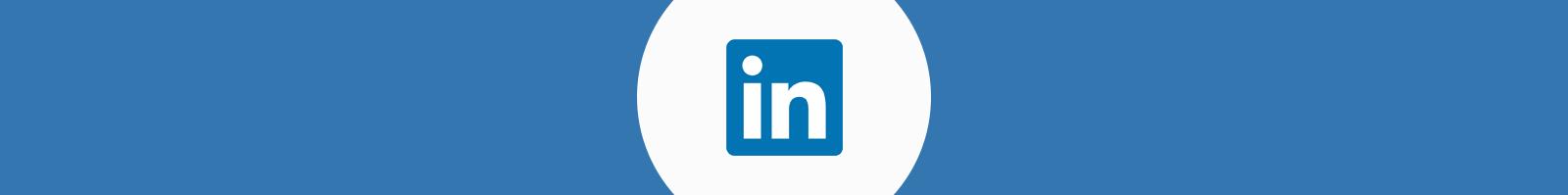LinkedIn Divider